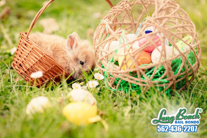 How did we get the Easter Bunny?