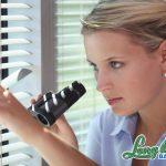 Having Trouble With Nosy Neighbors?